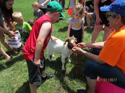 Children at an outdoor petting zoo