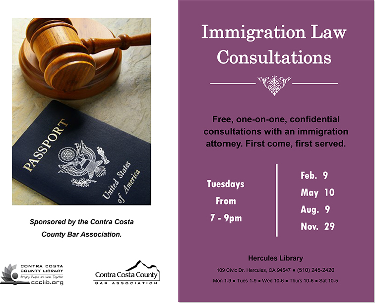Immigration Law Consultations