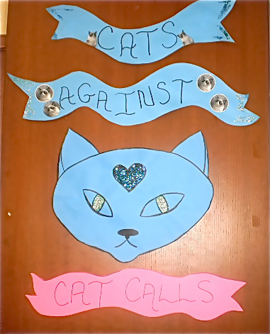 """Cats Against Cat Calling"" display"