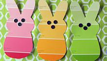 Bunny paint chips