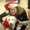 A woman wearing a Santa hat and a child pet a dog