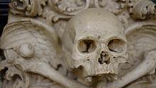 Skull Photo by Bistrian Iosip on Unsplash