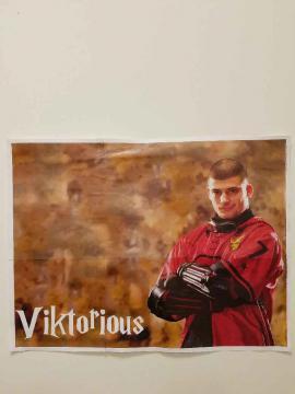 Viktor Krum poster